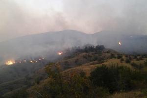 В горах Крыма вспыхнул сильный пожар: опубликованы фото